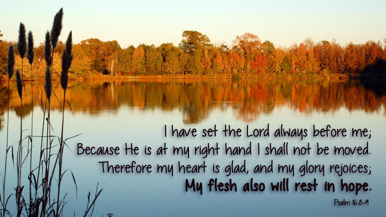 Psalms 16 8 9