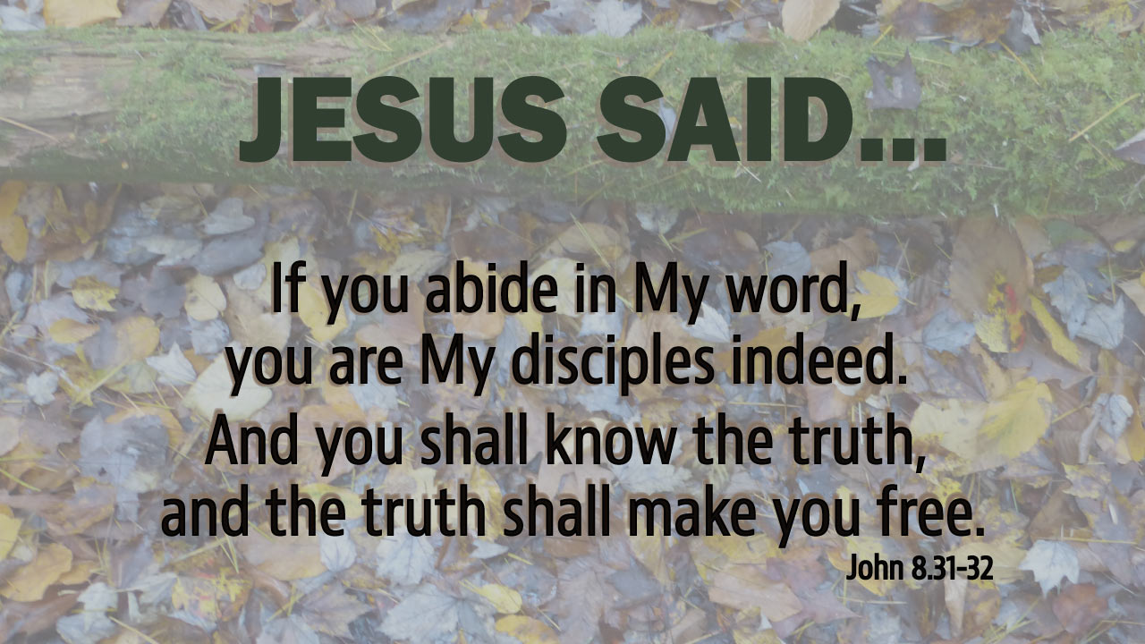Image result for John chapter 8 verse 43